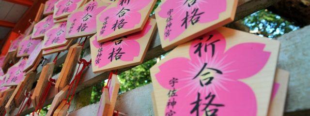 日本文化大学の倍率が急上昇している理由とは