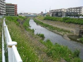 日本文化大学と小さな用水路の関係